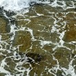 Stock Photo: Gushing Sea