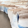 The edge of a soiled glacier slowly melting into a lake — Stock Photo