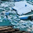 Glacier Fragments Floating on the Water — 图库照片