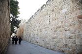 Un camino al lado de la pared circundante — Foto de Stock