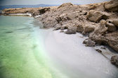 Dead Sea Salty Shore — 图库照片