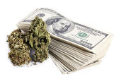 Marijuana and Cash — Stock Photo