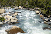 A small river with gushing water — Stock Photo