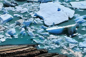 Glacier Fragments Floating on the Water — Stock Photo
