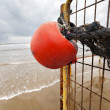 Stock Photo: Winter Beach Buoy and Fence