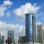 Downtown Skyline — Stock Photo #22427789