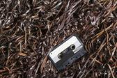 空白可刻录音频盒式磁带-选择性焦点上 — 图库照片