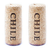 Wine cork — Stock Photo