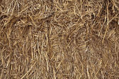 Bale of Hay Background — Stock Photo