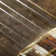 Stock Photo: Tar Strings Macro