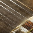 Tar Strings Macro — Stock Photo