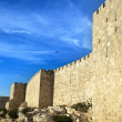 Stock Photo: Old Jerusalem City Wall
