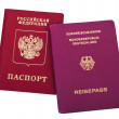 Double Nationality - Russian & German — Stock Photo