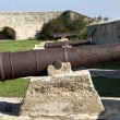 Napoleon's Cannons — Stock Photo