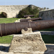 Stock Photo: Napoleon's Cannons