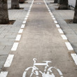 Bicycle Lane — Stockfoto