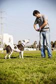 Pitbull ve köpek sahibi — Stok fotoğraf