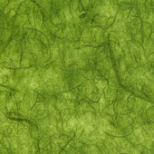Rice Paper Texture - Green XXXXL — Stock Photo