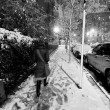 Lone woman walking on the snow covered pavement of a Harlem stre - Stock Photo