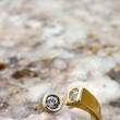 Ring on Salty Rock - Stockfoto