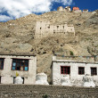 Leh Mountain Houses - Stock Photo