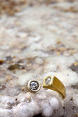 Ring on Salty Rock — Stock Photo