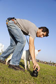 Trainer Placing Dog Chew Toy for Bull-Terier at Park — Stock Photo