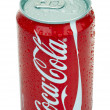 Isolated Chilled Coca Cola — Stock Photo #24046403