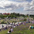 Sunday at Mauer Park Berlin Germany — Stock Photo