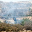 Stock Photo: Fire in PalestiniField by Wall of Separation