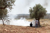 Palestinians by Tear Gas and the Separation Wall — Stock Photo