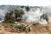 West Bank Settlements and Fire in a Palestinian Field — Stock Photo