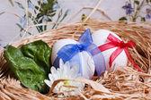 Paar van eieren — Stockfoto