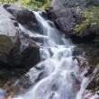 Mountain waterfall. fast stream water in the romania — Stock Photo