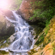 Mountain waterfall. fast stream water in the romania  — Lizenzfreies Foto