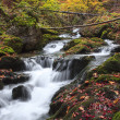 Stock Photo: Autumn colors of waterfall in Transylvania