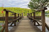 Wood path in the Plitvice Lake — 图库照片