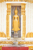 Gold cement buddha on wall of temple — Stock Photo