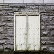 White door in a stone wall — Stock Photo