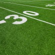 Thirty yard line - football with natural lighting - ストック写真