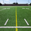 Football field — Stock Photo #22339429
