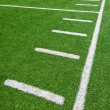 Football field — Stock Photo #22339495