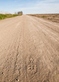 Dusty road on a hot summer day — Stock Photo