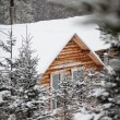 Stock Photo: Log Wood Shack