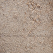 Sawdust texture — Stock Photo #22375331