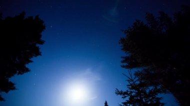 Hvězdy čas zanikla jsou krásné — Stock video