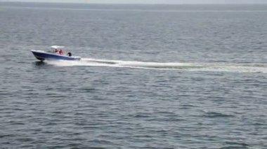 Motor boat in the sea — Stock Video