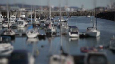 White yachts in the port — Stock Video