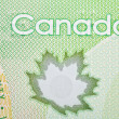 Ottawa, Canada, Avril 13, 2013,  Extreme Closeup of New Polymer Twenty Dollar Bills — Stock Photo