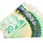 Ottawa, Canada, Avril 13, 2013, The New Polymer Twenty Dollar Bills isolated on white — Stock Photo